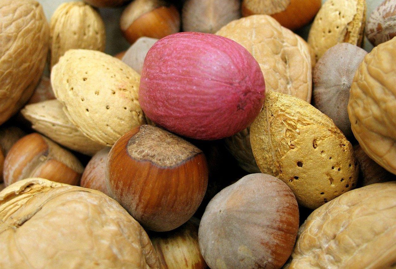 allergie noisette noix