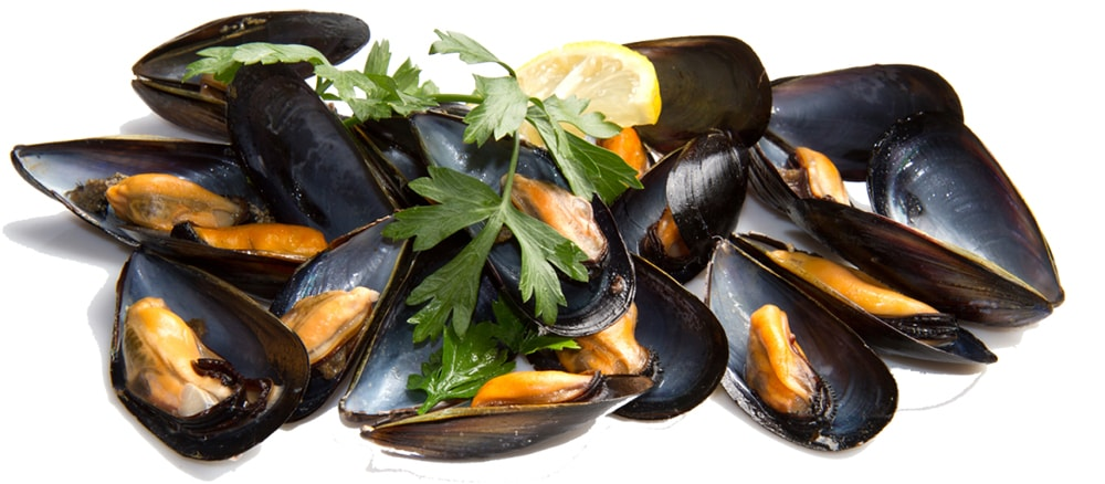 aliment moules riche en fer